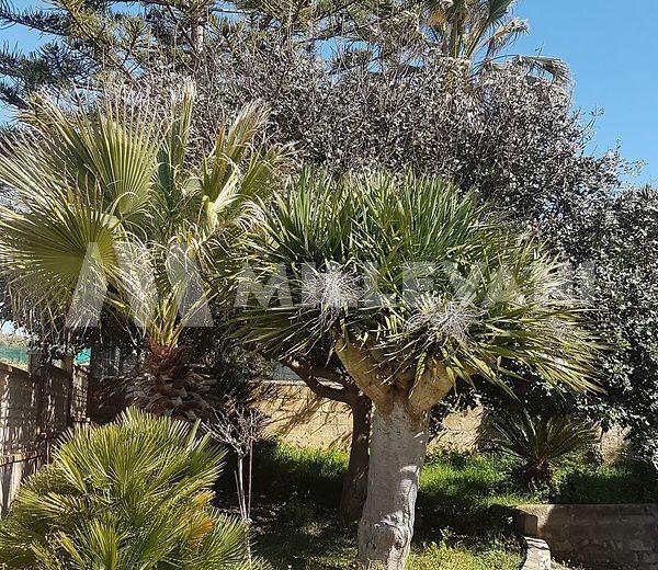 villa a Cava D'Aliga-SCICLI-rif 328